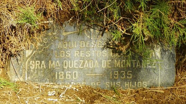 Quezada De Montanez, half-surrounded by a tree