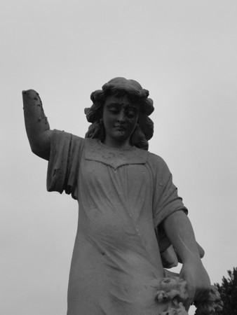 Konig Angel black & white