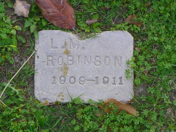 2-year-old L. M. Robinson
