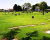 Cemetery vista 2