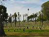 How a cemetery should look