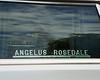 Angelus Rosedale hearse