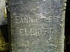 Fannie Lee Elliott<br /> 1841 - 1929