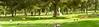 Belmont Memorial Park - 8