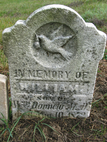 In memory of William Donnely