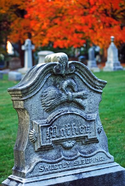 Cedar-Hill-Fall 182-B