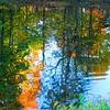 An autumn reflection.