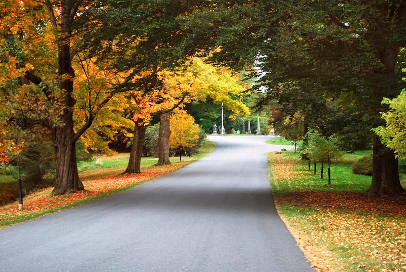 Cedar-Hill-Fall 013-B