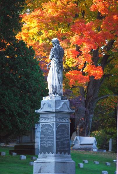 Cedar-Hill-Fall 162-B