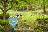 Babyland, Riverside Cemetery, Cleveland, Ohio
