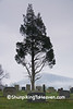 St. John's Cemetery, Watauga County, North Carolina