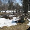 Damage. March 17, 2009.