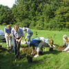 Garden Club planting cuttings from maples. August 31, 2011.
