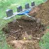 Planting trees. May 23, 2012.