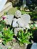 A Garden Angel