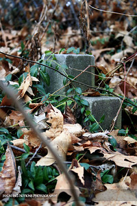 Buried (Saint Patrick's Cemetery, Bowne Township MI)