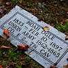 Mixed Company (White Oak Flats Cemetery, Gatlinburg TN)