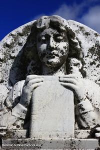 Avid Reader (Hastings Township Cemetery, Hastings MI)