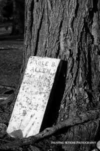 Displaced (Mount Olivet Cemetery, Battle Creek MI)