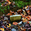 Sunk (Catalooche Valley Palmer Chapel Cemetery, Great Smoky Mountains National Park TN)