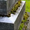 Invasion (Rockford Cemetery, Rockford MI)