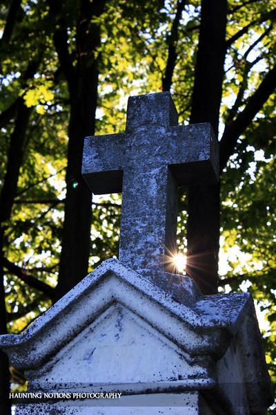 Bursting Out (Saint Patrick's Cemetery, Bowne Township MI)