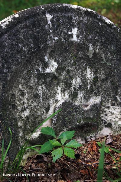 Prince Among Men (Parmalee Cemetery, Parmalee MI)