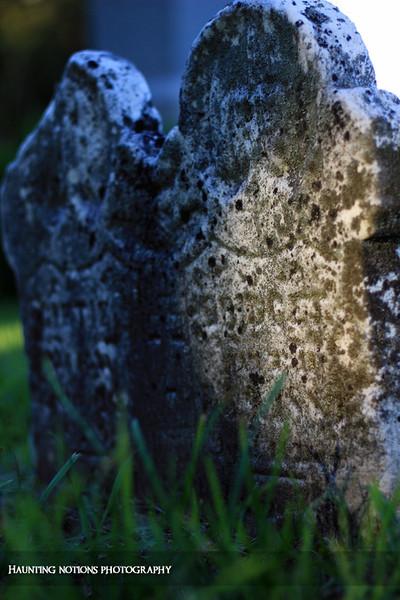 Inseperable (Saint Patrick's Cemetery, Bowne Township MI)