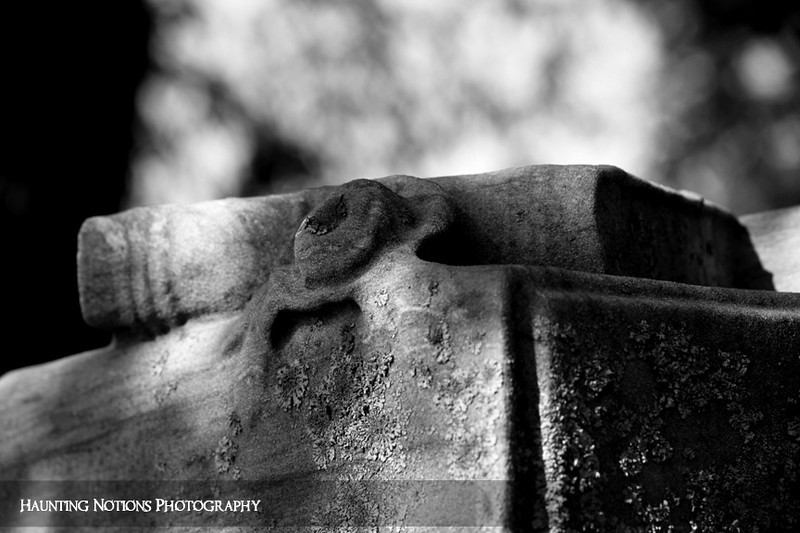 Shelved (Pilgrim Home Cemetery, Holland MI)