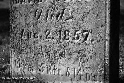Gone Too Soon (Whitneyville Cemetery, Whitneyville MI)