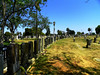 Sweeping views of hundreds of thousands of burials