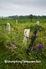 Westrope Family Cemetery, Lafayette County, Wisconsin