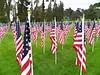 2018 - 1,000 Memorial Day Flags - 3