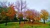 Autumn in Glendale - 2
