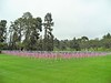 2018 - 1,000 Memorial Day Flags  in the Glendale Field of Honor and Gratitude thanks to the efforts of the Glendale Sunrise Rotary.
