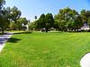 Mount Olive Vista
