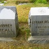 The Beall Family continue to suffer losses, even after death. Statuary has been removed from these bases.