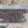 Whitaker_Sarah_Ashwander