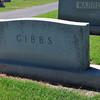 Gibbs-1