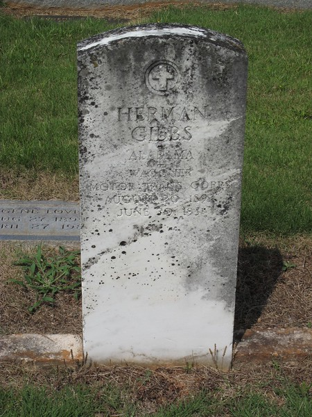 Gibbs_Herman1894