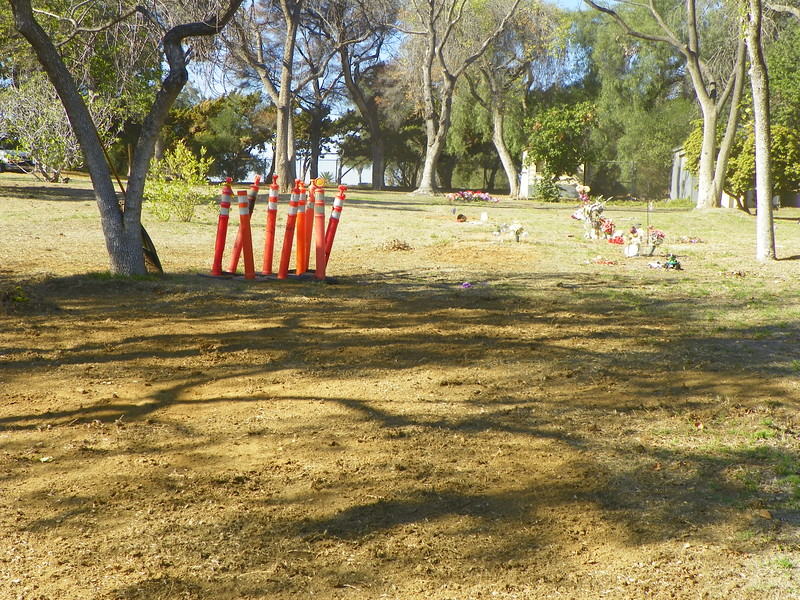 The 2013 grave, filled with 1,431 cremations the day before I took this picture, one day before the annual service.