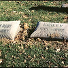 In the Elmwood Cemetery, Kansas City, Missouri, are two pillow stones.  One for Daisy and Baby one for Emiley.  I'm sure there is a story behind the Dairsy and baby inscription.  Dec. 9, 2001