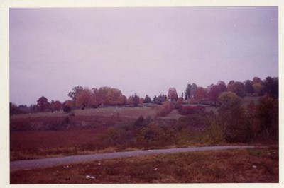 Color Photo of the old City Cemetery V (00436)
