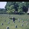 Confederate Grave Stones  (09741)