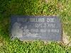 Baby William Doe, abandoned newborn
