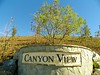 Canyon View is the latest development, located on the hill going up to Grace Terrace.  It is many acres.  At this point, there are no special features on the property.
