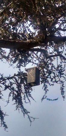 Bluebird House, part of a partnership with the Audubon Society