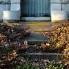 Overgrown (Oak Hill Cemetery, Grand Rapids MI)