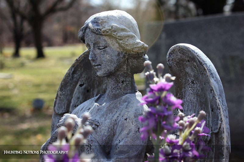 Halo (West Woodlawn Cemetery, Kentwood MI)