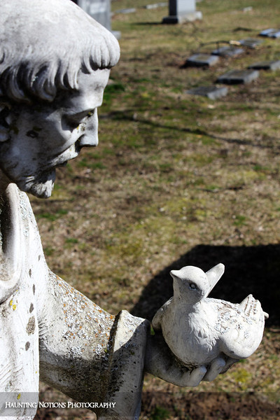 A Bird In The Hand (West Woodlawn Cemetery, Kentwood MI)